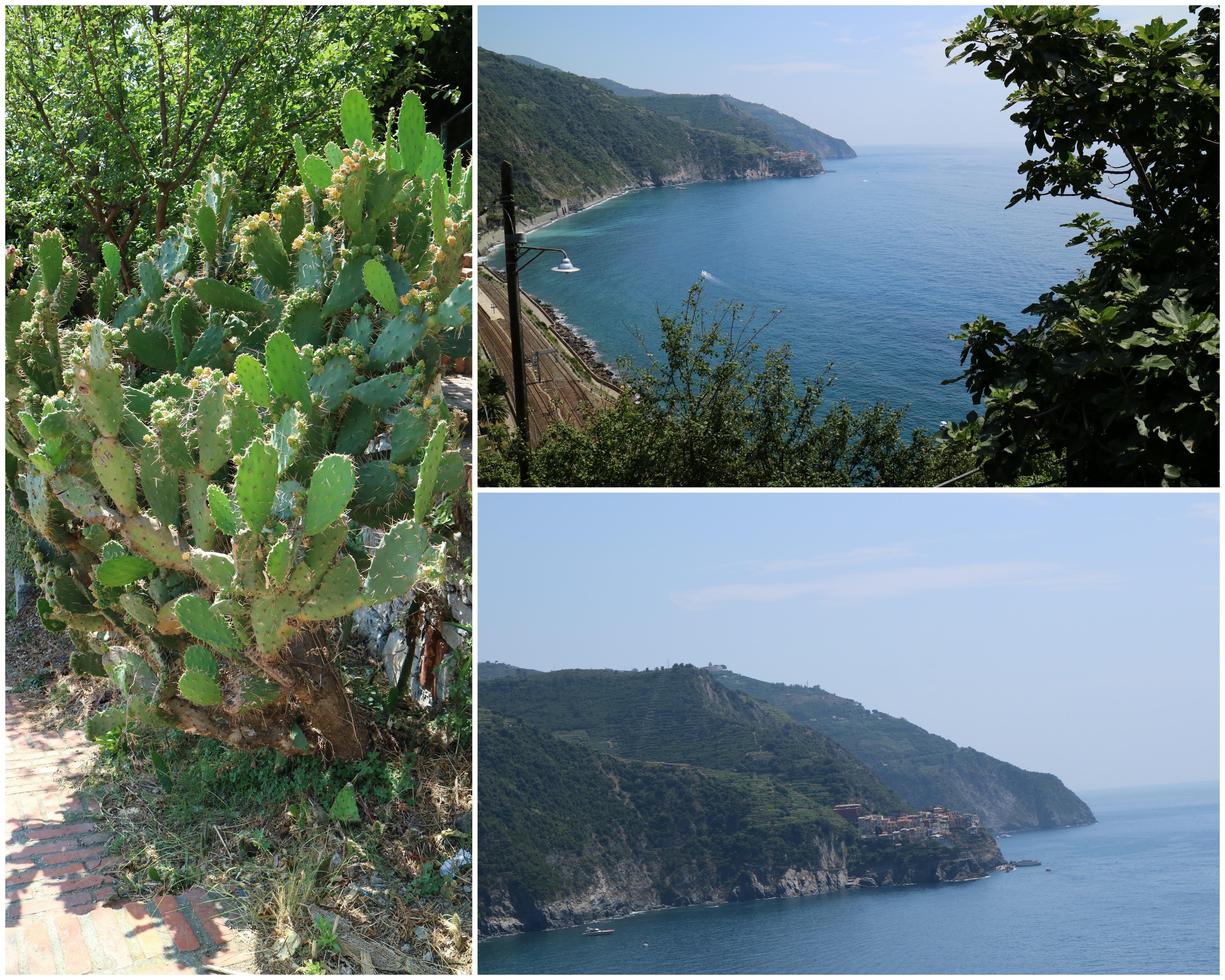 fotos-til-blog-004